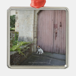 Dog sitting in front of closed doors Silver-Colored square decoration