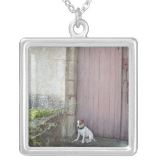 Dog sitting in front of closed doors silver plated necklace