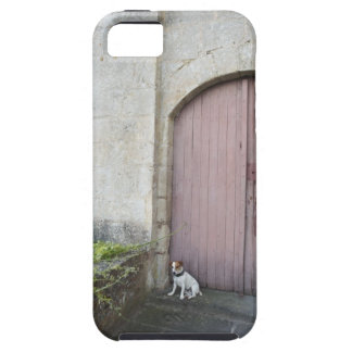 Dog sitting in front of closed doors tough iPhone 5 case