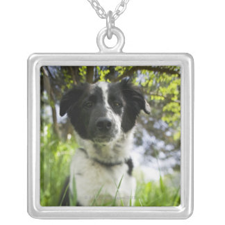 Dog sitting in grass silver plated necklace