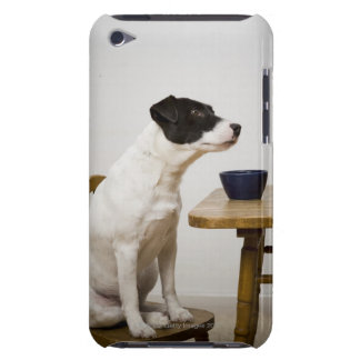 Dog sitting on a chair in front of a bowl on the barely there iPod case