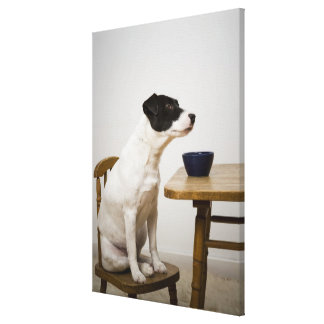 Dog sitting on a chair in front of a bowl on the canvas print