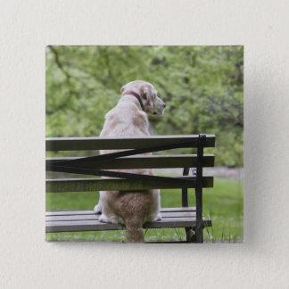 Dog sitting on park bench 15 cm square badge