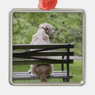 Dog sitting on park bench christmas ornament