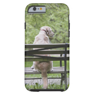 Dog sitting on park bench tough iPhone 6 case