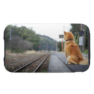 Dog sitting on train station tough iPhone 3 case