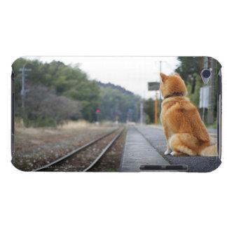 Dog sitting on train station iPod Case-Mate case