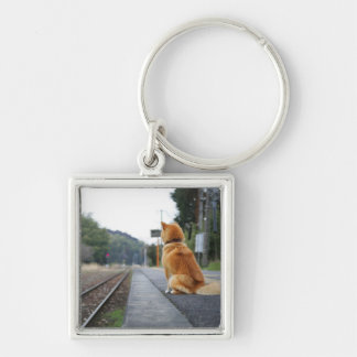 Dog sitting on train station Silver-Colored square key ring