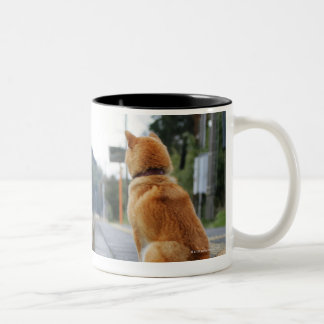 Dog sitting on train station Two-Tone coffee mug