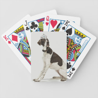Dog sitting with a tiara on head bicycle playing cards