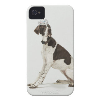 Dog sitting with a tiara on head iPhone 4 Case-Mate case