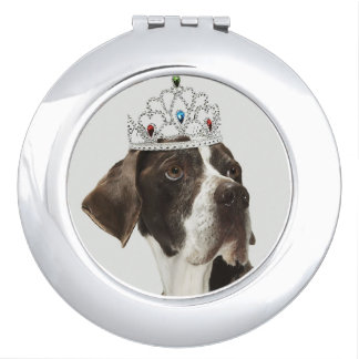 Dog sitting with a tiara on head makeup mirrors