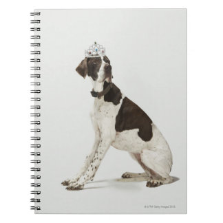 Dog sitting with a tiara on head spiral notebook