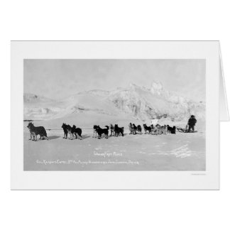 Dog Sled Champions Alaska 1910 Greeting Card