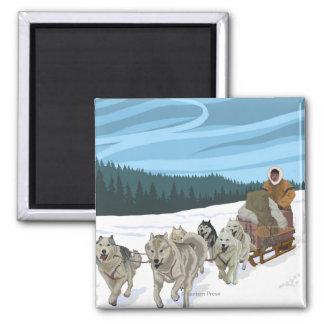 Dog Sledding Scene - Fairbanks, Alaska Square Magnet