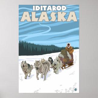 Dog Sledding Scene - Iditarod, Alaska Poster