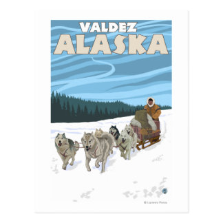 Dog Sledding Scene - Valdez, Alaska Post Card