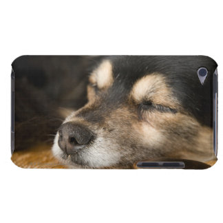 Dog sleeping 2 iPod touch case