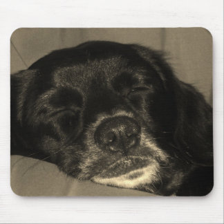 Dog sleeping mouse pad