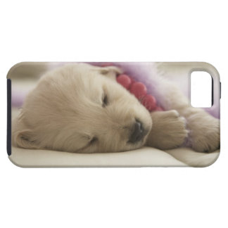 Dog sleeping on bed iPhone 5 cover
