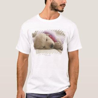 Dog sleeping on bed T-Shirt