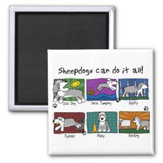 Dog Sports Old English Sheepdog Square Magnet