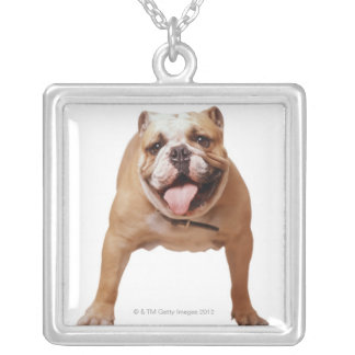 ,dog square pendant necklace