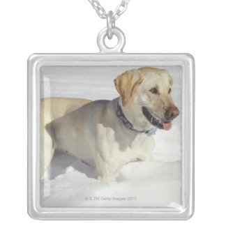 Dog standing in snow silver plated necklace