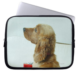 Dog standing on a couch with a gift laptop sleeve