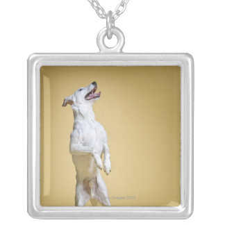 Dog standing on hind legs silver plated necklace