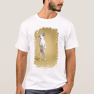 Dog standing on hind legs T-Shirt