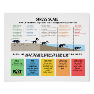 Dog Stress Scale - Avoidance/Fear Beach Analogy Poster