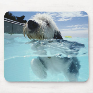 Dog Swimming in a Swimming Pool Mouse Mat