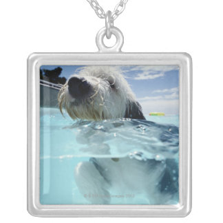 Dog Swimming in a Swimming Pool Silver Plated Necklace