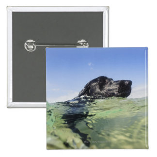 Dog swimming in water 15 cm square badge