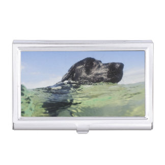 Dog swimming in water business card holder