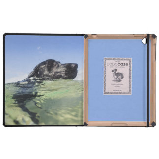 Dog swimming in water iPad cover