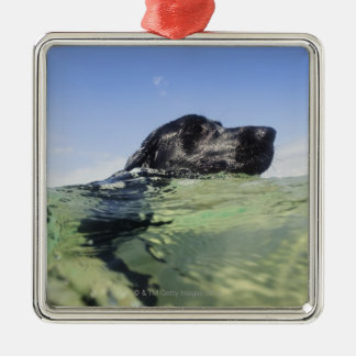 Dog swimming in water square metal christmas ornament