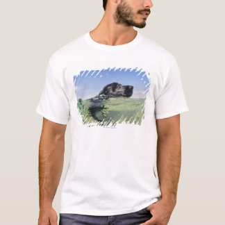 Dog swimming in water T-Shirt