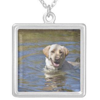 Dog swimming square pendant necklace