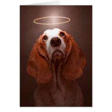 Dog Sympathy--Basset Hound Sympathy Card