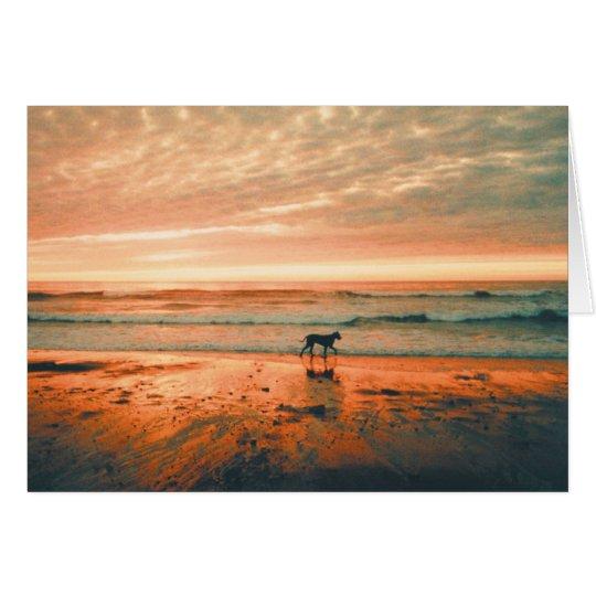 Dog Sympathy-Heidi Card