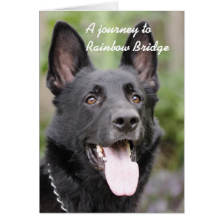 Dog sympathy - Rainbow Bridge Card