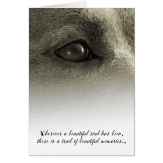 Dog Sympathy Wherever a Beautiful Soul has Been Greeting Card