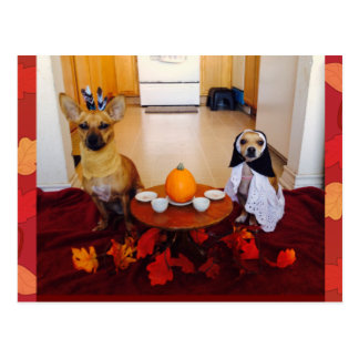 Dog Thanksgiving Postcard