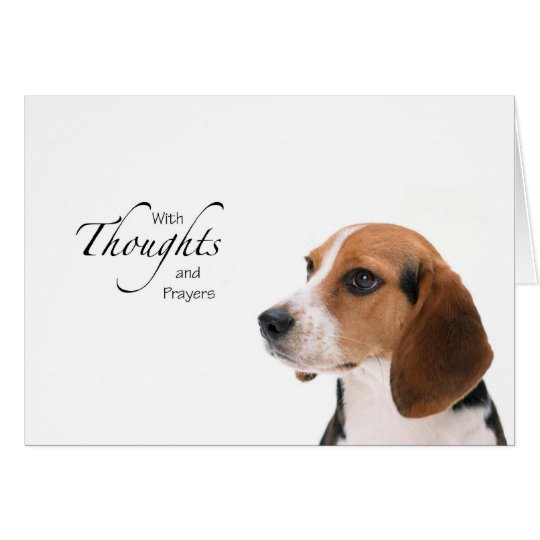 Dog Thoughts and Prayers Card