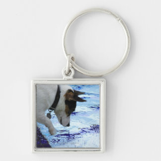 Dog touching water at the swimming pool key ring