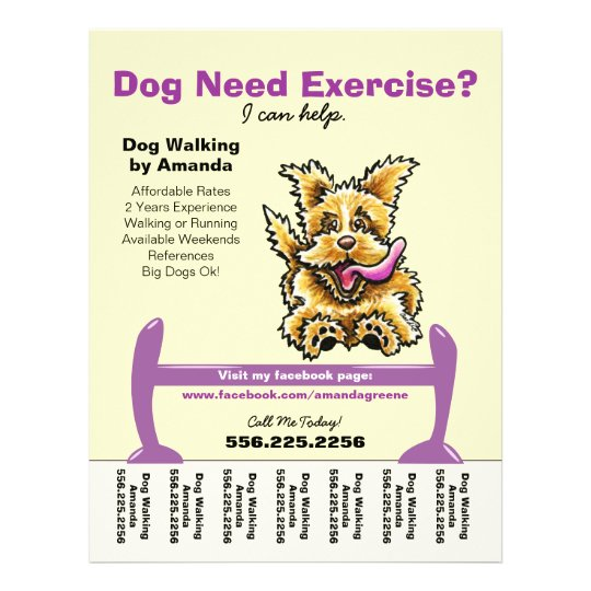 Dog Trainer Training Active Terrier Tear Sheet