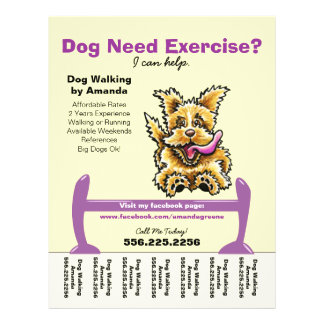 Dog Trainer Training Active Terrier Tear Sheet 21.5 Cm X 28 Cm Flyer