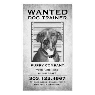 dog trainer wanted poster Double-Sided standard business cards (Pack of 100)